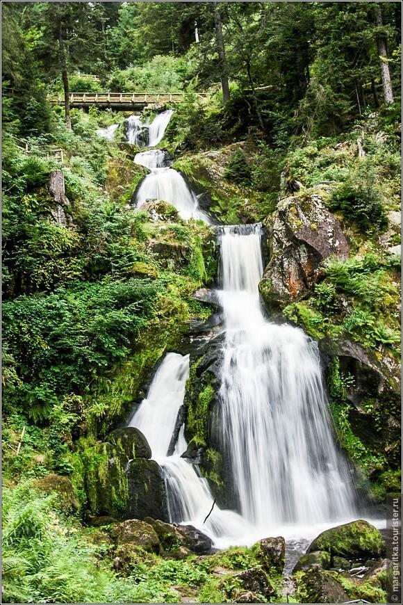 вокруг водопада довльно глухой и непроходимый лес из-за крутого наклона скал в ущелье