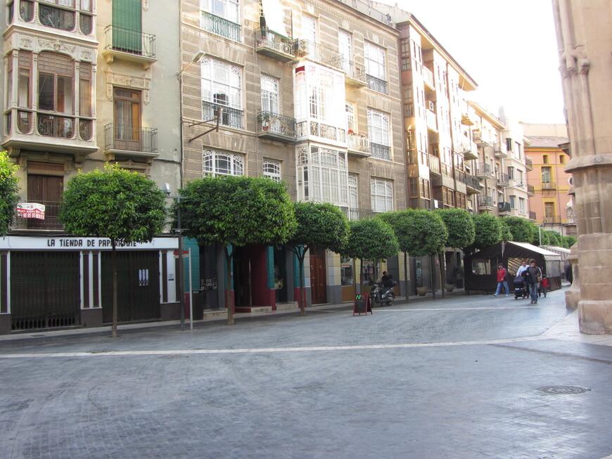 Апельсиновые и мандариновые деревья для юга Испании не редкость. Но в Мурсии они были повсюду!
