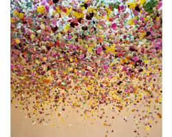 В Сочи состоится арт-фестиваль цветов