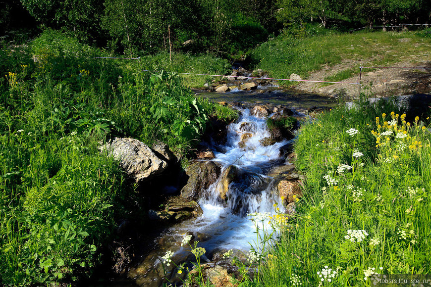 Ла - Массана. Природа.jpg
