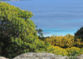 Остров Азинара