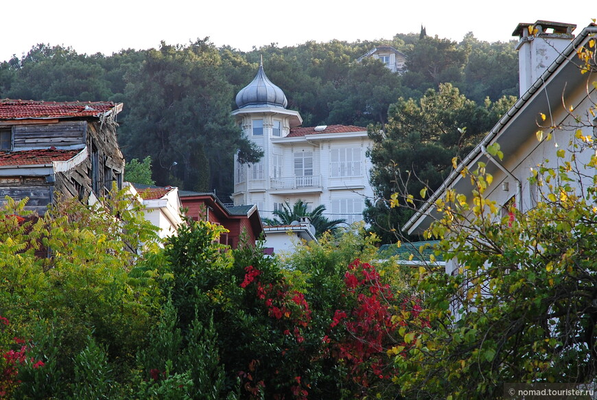 Пройдя мимо очередных красивых домиков, прячущихся за яркой зеленью...