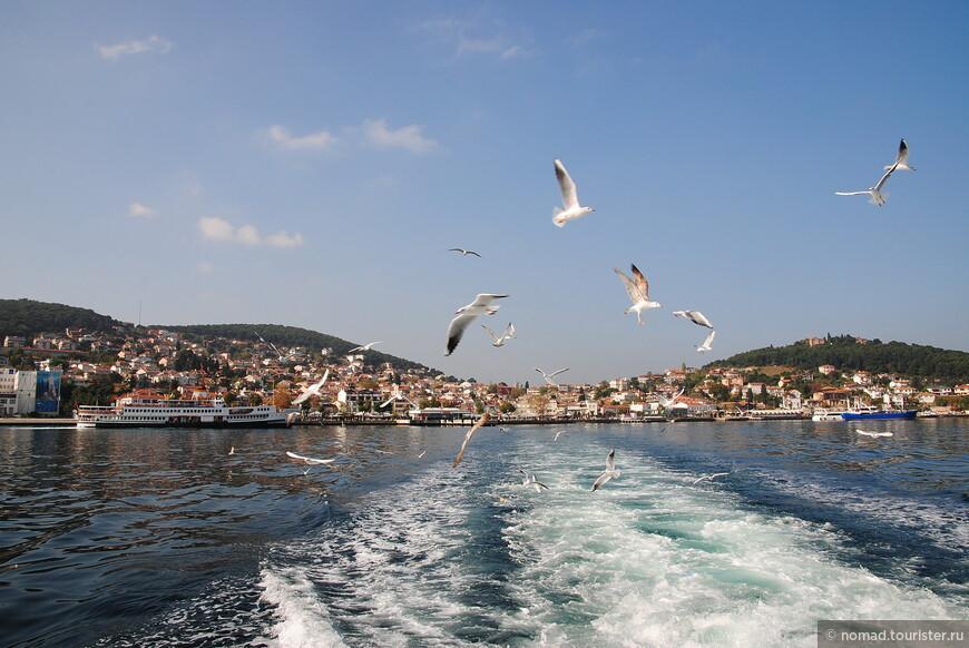 Вот и все, мы отчалили с острова, и направились в сторону Стамбула... Если честно, то я не могу рекомендовать посещать оба острова в один заезд... Байюкада хороша, там есть где погулять, и что посмотреть, и уезжать оттуда рано неохота.. Так что на ее посещение лучше запланировать целый день... А вот на Хейбелиаду, как мне кажется, вполне хватит половины дня, если не меньше...