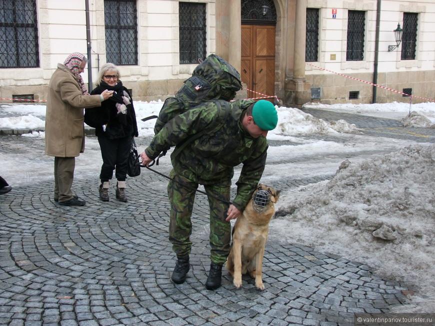 Бабульки на заднем плане напрасно не чувствуют угрозу миру, исходящую от боевой немецкой овчарки и ее наставника-поводыря