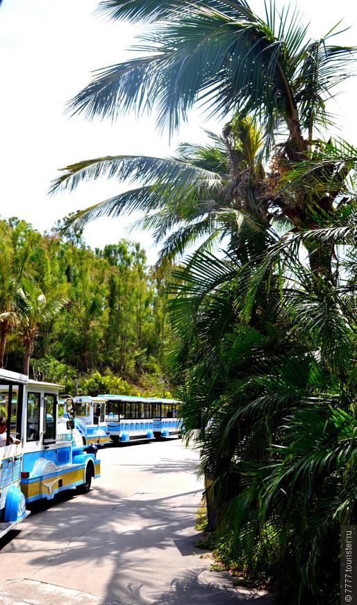 Внутри парка-едем на троллейбусиках.