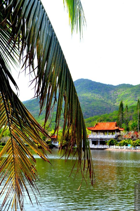Взгляд с берега пруда у храма