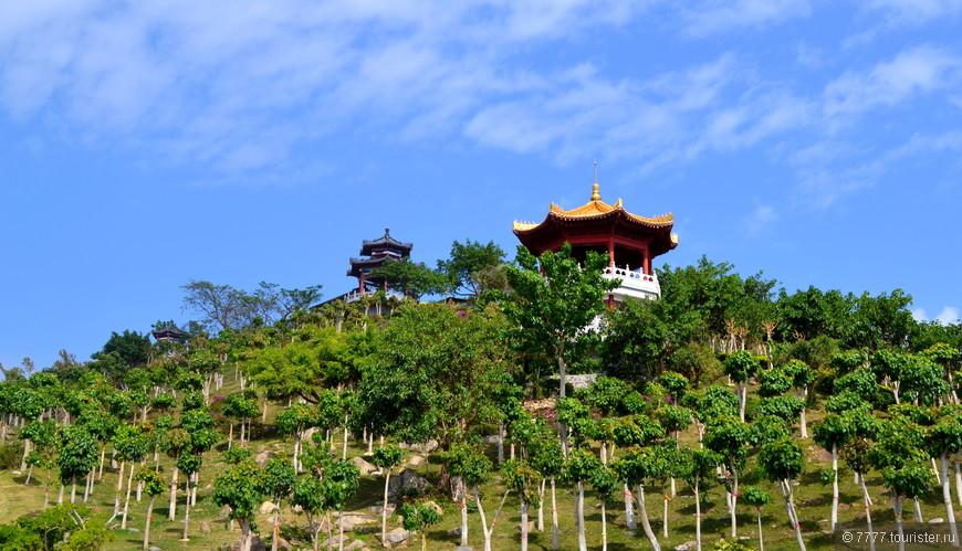 """Вы видите,как китайцы поддерживают деревца?Каждое подвязано и """"припёрто"""".Такое не только на территории ландшафтного парка,на улицах просто."""