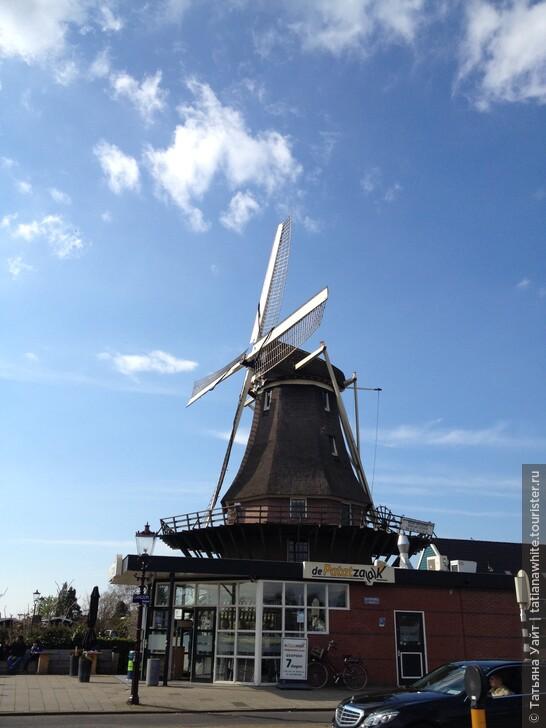По максимуму в Амстердаме за 2 дня