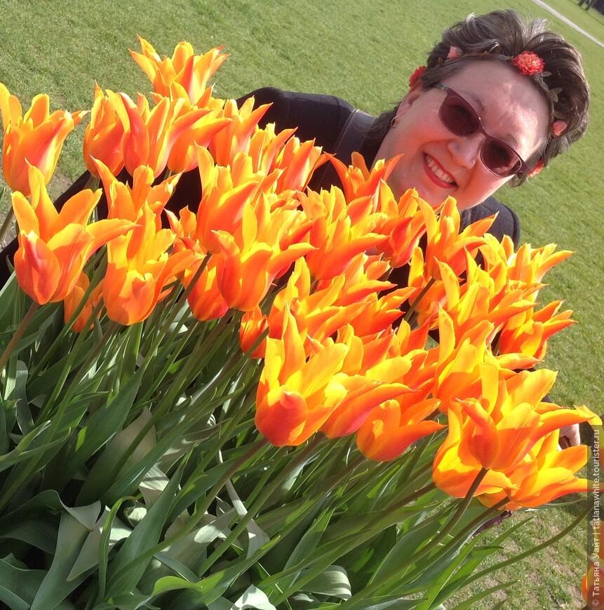 Я утопаю в весенних голландских тюльпанах (напротив музея-галереи Ван Гога).