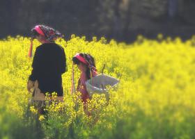 весна,тибетскийдеревни.
