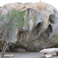 Древние камни, выжженная земля, огромные кактусы и ветер...