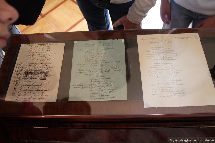 Пушкин, Дельвиг, Кюхельбекер, Данзас, и многие другие лицеисты входили в творческий литературно-поэтический кружок, издававший рукописные журналы «Лицейский мудрец», «Вестник», «Для удовольствия и пользы» и другие.