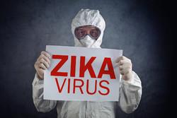 В Мексике выявили более 200 случаев лихорадки Зика