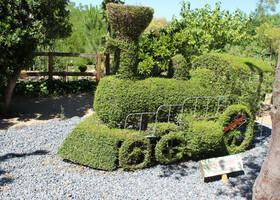 Парк для детей и взрослых El Bosque Encantado