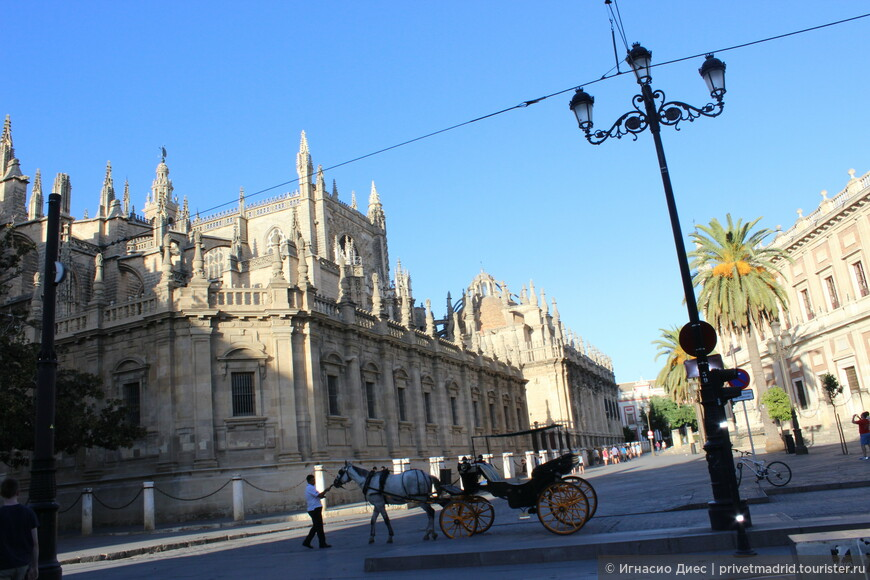 Кафедральный собор в Севилье