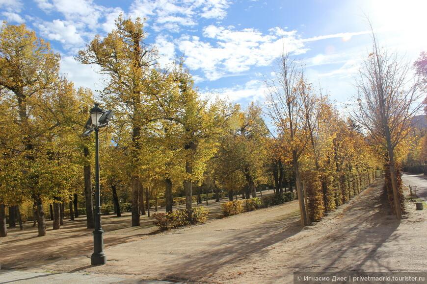 Сады  Ла - Гранха