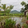 Вид в районе Луангпрабанга