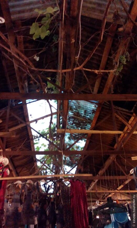 Вьётся виноградная лоза под крышами торговых рядов.