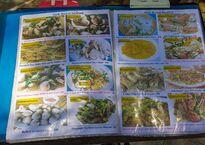 beachfront-thai-seafood-restaurants-rawai4.jpg