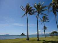 По острову Оаху (Гавайи) - Часть 1.