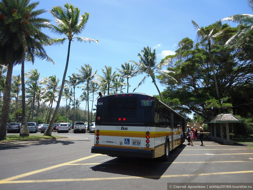 Проехав около 40 минут от Регионального парка Куалоа - я вышел на самой северной точке острова Оаху