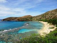 По острову Оаху (Гавайи) - часть 4.