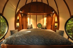 В Подмосковье построят уникальный эко-отель