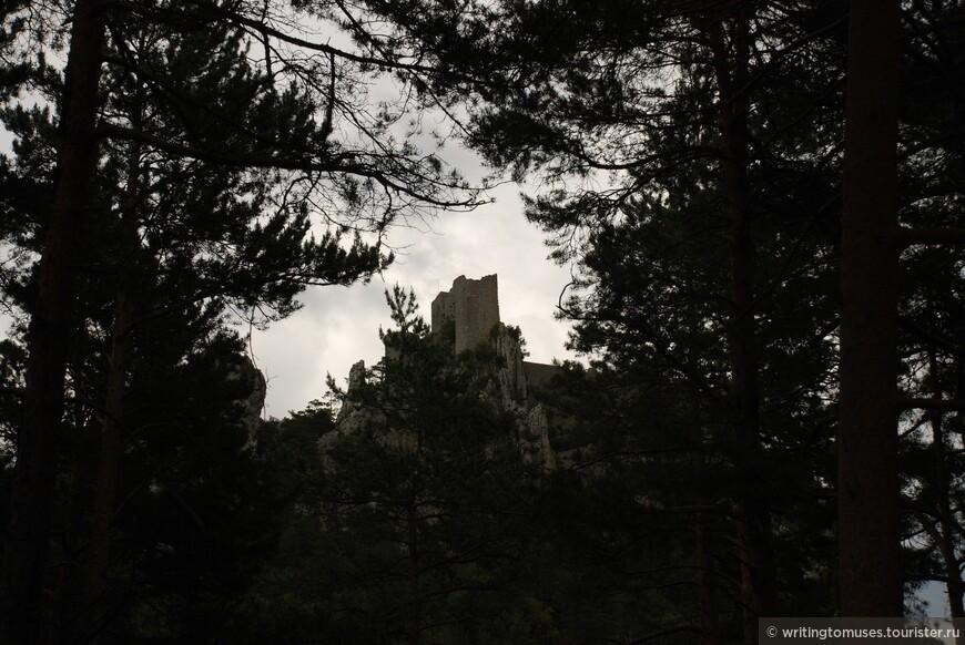Замок Пюиларен и сосновый лес, в котором как и в былые времена охотятся на диких кабанов.