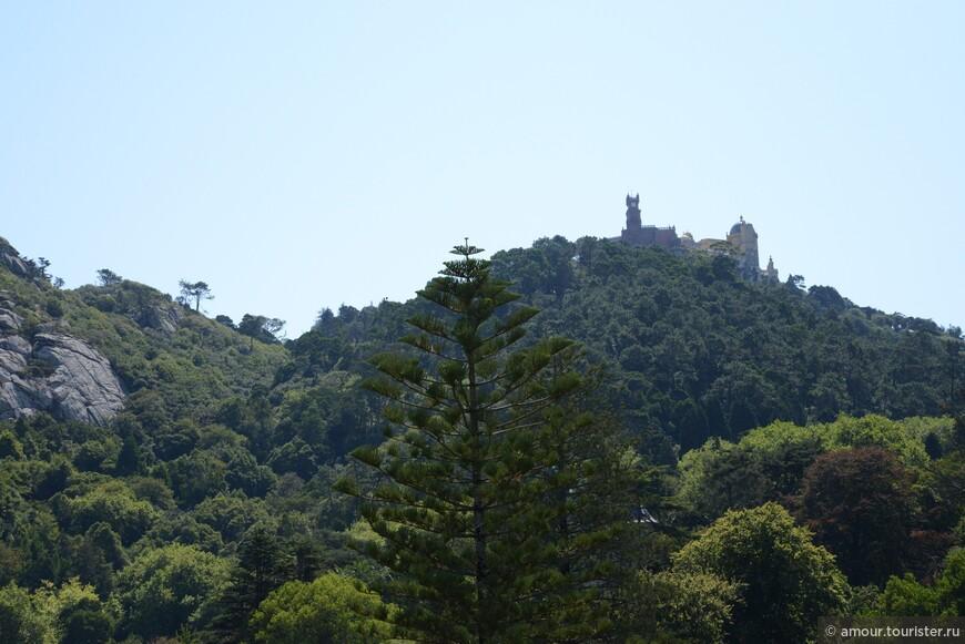 На вершине горы Замок Пена.