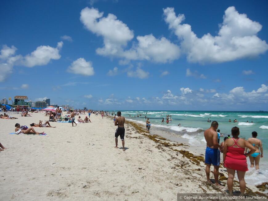 Песок с премесью у берега есть немного водорослей, которые выбрасывает на берег течение Гольфстрима, но водорослей немного и они не мешают