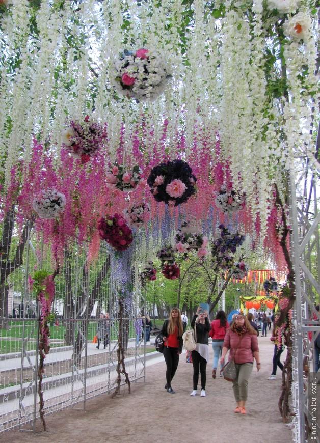 Цветущий туннель просто восхитителен!