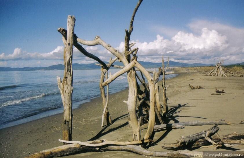 Sole. Mare.  Уже скоро сезон, но еще пусты песчаные пляжи Принципины. (Провинция Гроссето. Принципина а Маре)