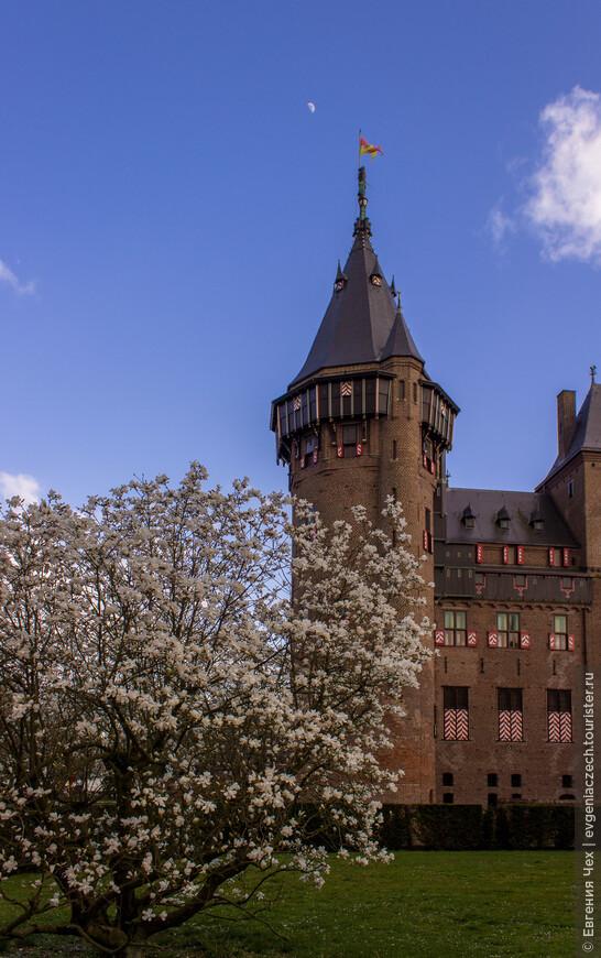 Необходим был величественный внешний вид, комфорт для пребывания в замке и возможности для посещения и развлечения гостей в сентябре.