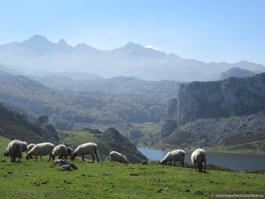 Озеро Эрсинья в горах Ковадонги и виды на Пики Европы.