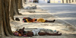 В Индии более 500 человек погибли из-за жары