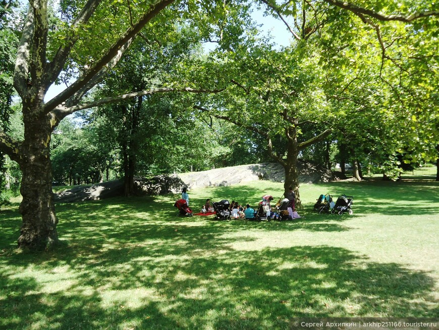 Американцы на лужайке сооружают пикник