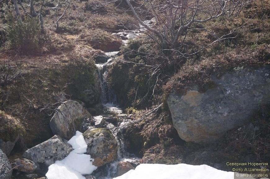 Северная Норвегия_20.jpg