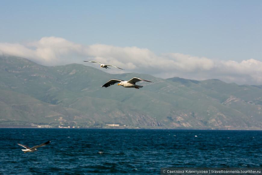 Озеро Севан - армянское море!