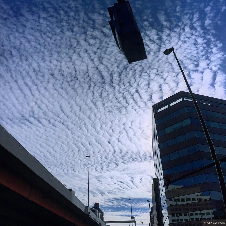 Перьевые облака
