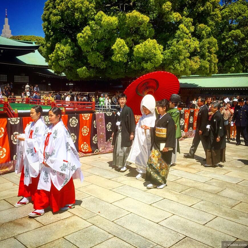 Японская свадьба. Если подгадать свой визит в святилище Мэйдзи в выходной или праздничный день, вы гарантировано сможете встретить японскую свадьбу.