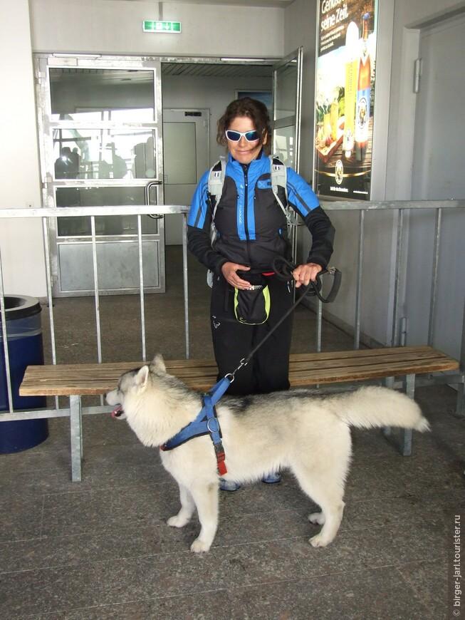 Путешествовать можно и с животными. Билет - 4 евро.