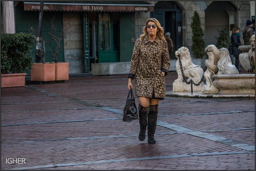 """дама """"в леопардах"""" тоже немного недовольна вниманием к своей персоне"""