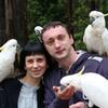 Экскурсия в нац парк Данденонг и остров Филиппа к параду пингвинов