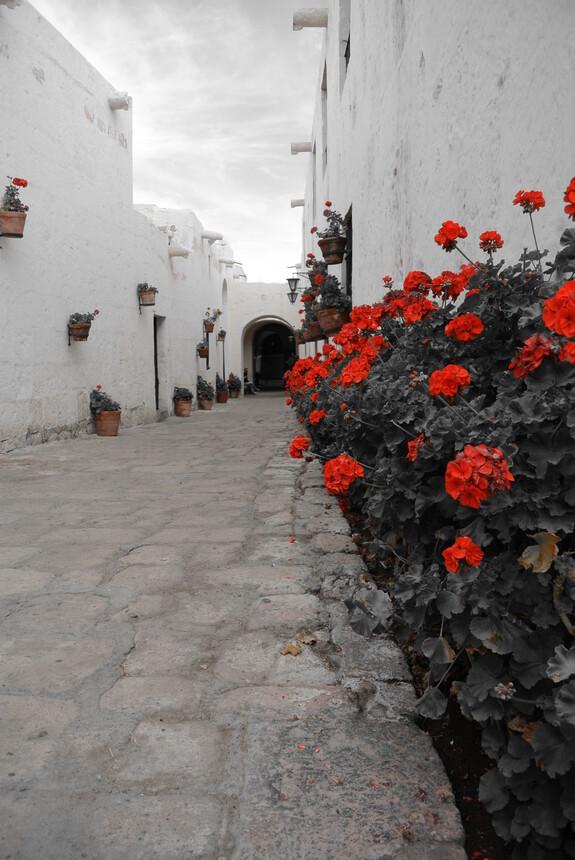 Арекипа. Монастырь Santa Catalina.