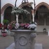 Азалии в монастырском дворике в Виченце.