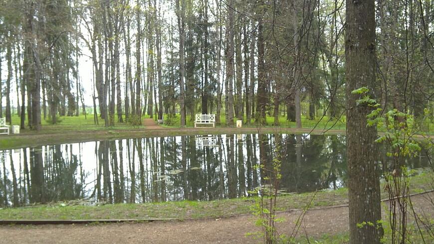 """В центре парка – круглый пруд, который окружают расположенные симметрично аллеи и живописные холмы с интересными названиями: """"Зверинец"""" и """"Парнас""""."""