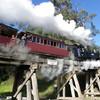 Нац парк Данденонг на 3-х дневном туре из Мельбурна
