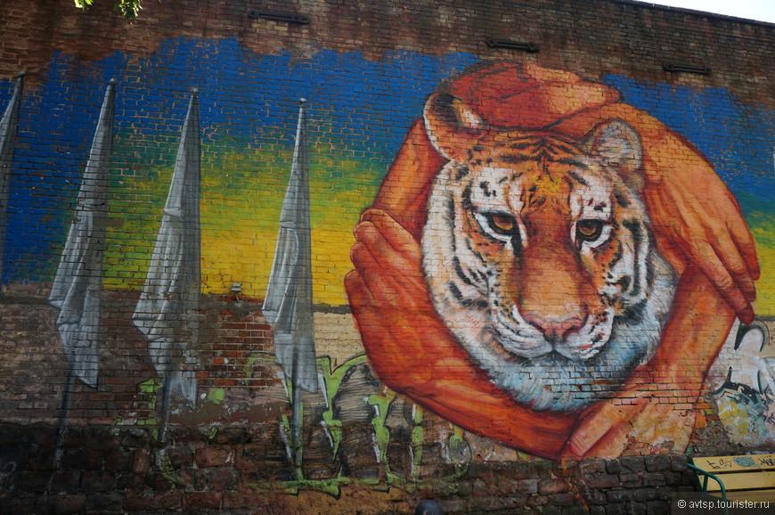Граффити за защиту тигров