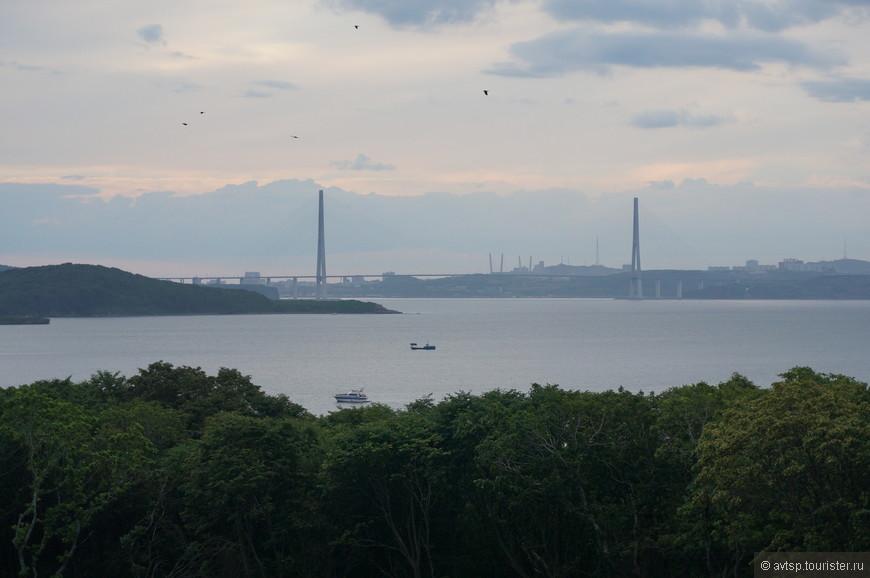 Вид на мост, который соединил город и остров Русский. Раньше можно было добраться только паромом.