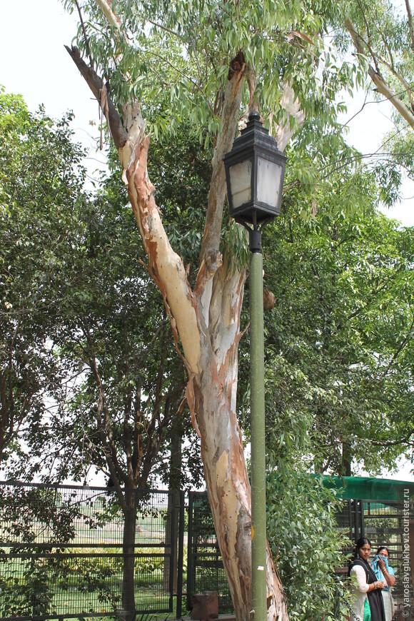 Парк расположен на том месте, где раньше были гхаты — каменные ступенчатые сооружения, служащие для ритуального омовения индуистов и как место кремации.